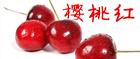 樱桃红福利